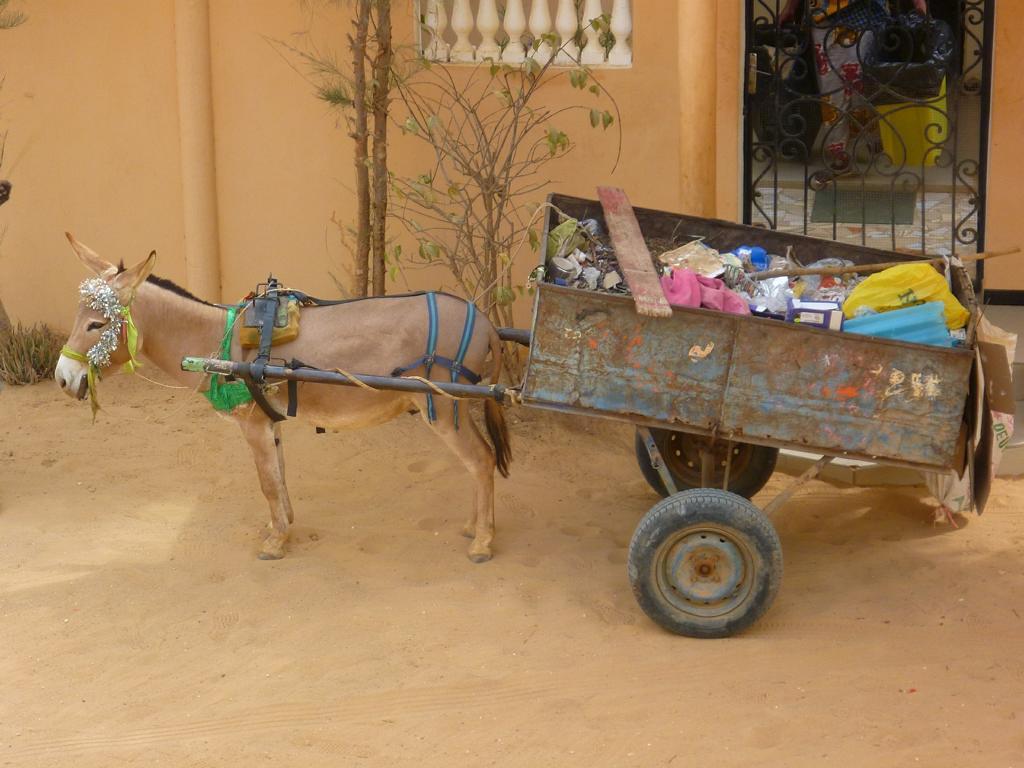 Beschauliches Leben im Senegal